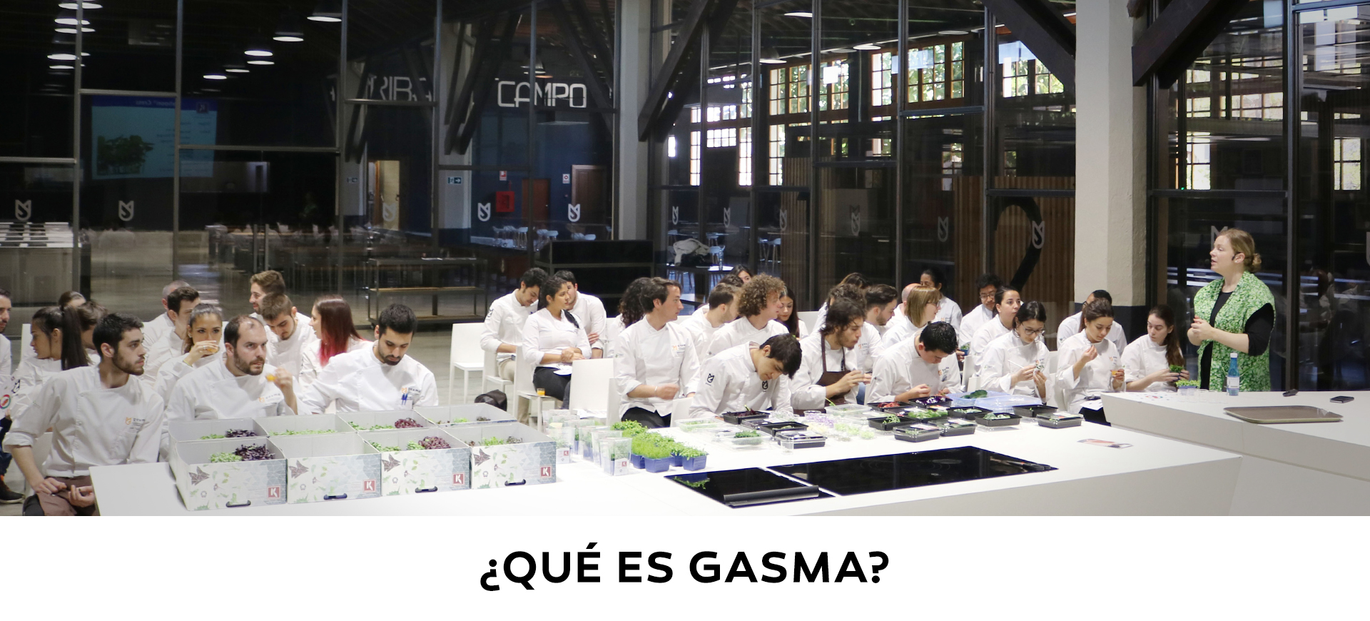 que_es_gasma_1920x8701