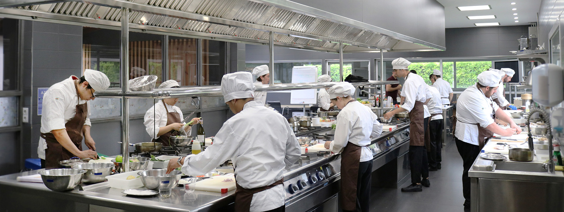 universidad gastronomica internacional